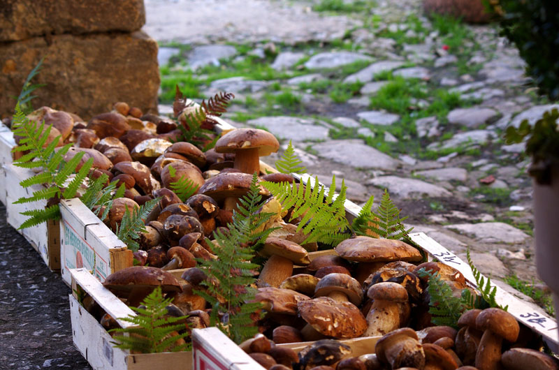 cepes monpazier © Pays de Bergerac, Joffrey Revoy
