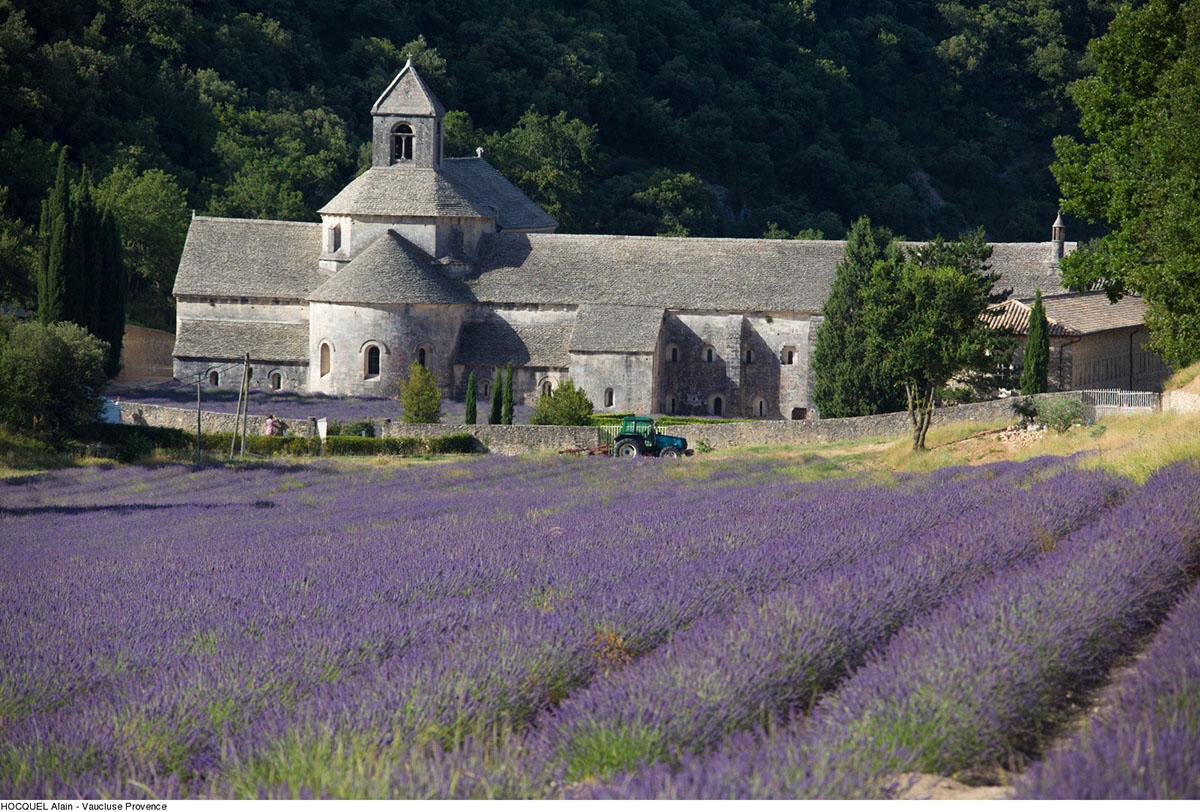 Senanque---Photo-Alain-Hocquel-2045.jpg-1600px